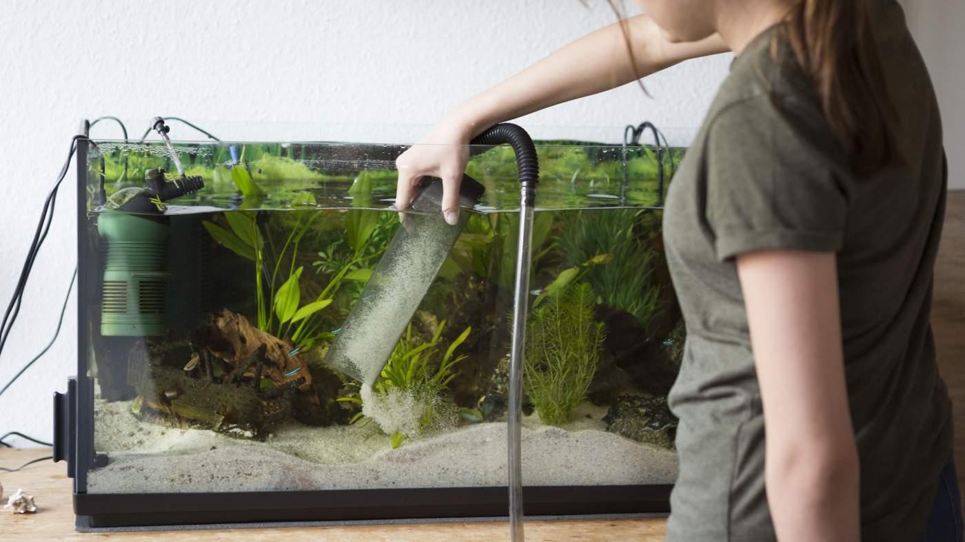 De 10 Beste Aquarium Stofzuiger